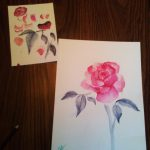 Student watercolor paintings of roses.